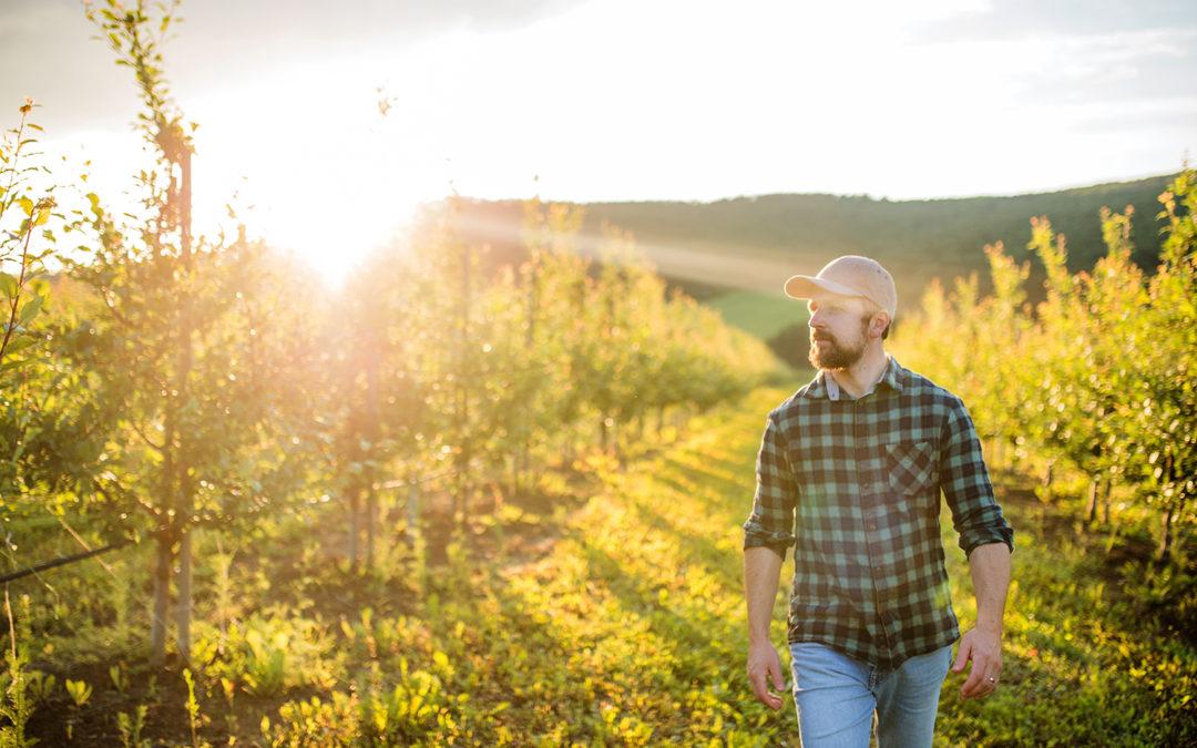 Sun'Agri au cœur de l'adaptation de l'agriculture au changement climatique